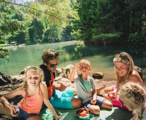 Familie beim Picknick am Almsee