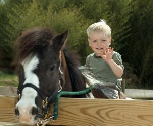 Herangehender Reiter mit seinem Pony