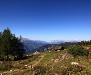 The Saukaralm in the beautiful hiking area of Grossarl