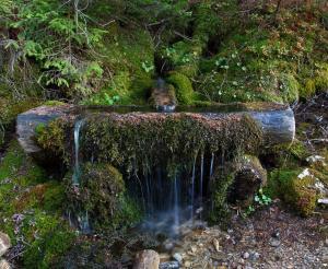 Schoener Brunnen bei der Unterwandalm