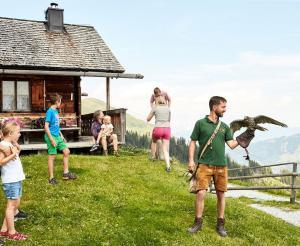 Stauende Besucher bei der Greifvogelschau auf der Hochalm