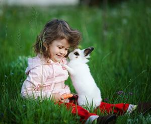 little girl in the meadow with a small rabbit