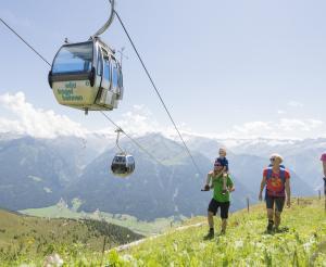Wildkogel cable car Neukirchen