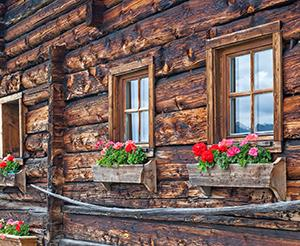 A mountain hut with flowers