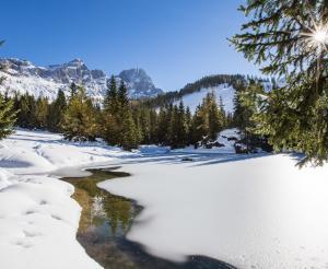 Almsee in winter