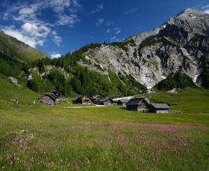 Ursprungalm with mountain landscape