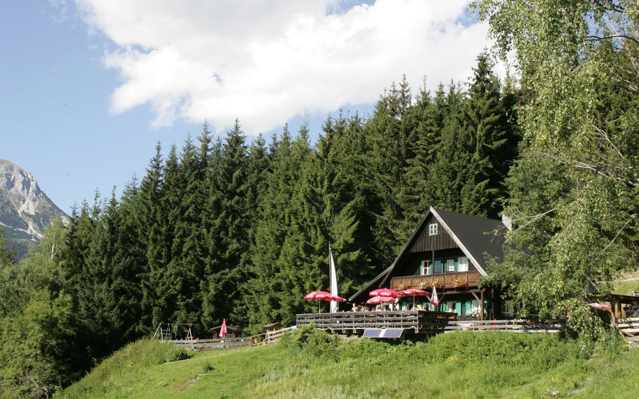 Die Ochsenalm im Wald am Rittisberg